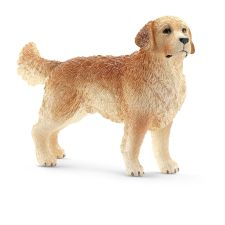 16394 Golden retriever rue